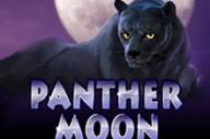 Panther Moon - играть в автоматы онлайн