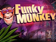 Азартная онлайн-игра экзотической тематики Funky Monkey