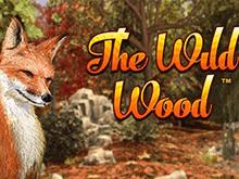 Виртуальный игровой аппарат лесной тематики The Wild Wood