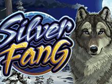 Silver Fang от Microgaming - популярная азартная игра